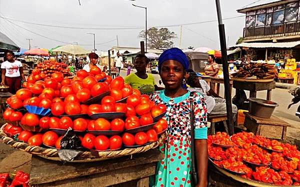 Prices of Tomatoes