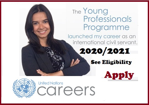 Young professionals programme for Africans 2020